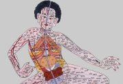 категория Китайская медицина
