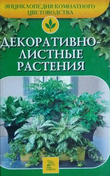 А. Ладвинская. Декоративнолиственные растения